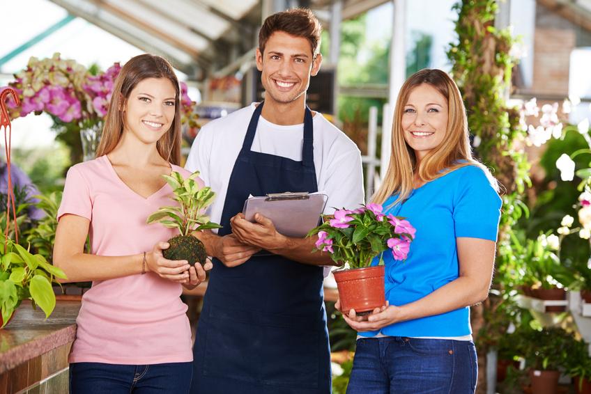 Wo pflanzen auf rechnung online kaufen bestellen for Wo pflanzen bestellen